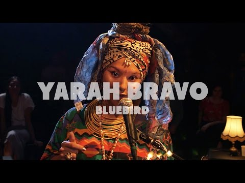 Yarah Bravo - Bluebird | Live at Music Apartment