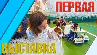 ДЖЕК РАССЕЛ на первой выставке! Всепородная выставка собак.