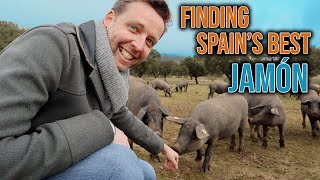 Where Does Spain's Best Jamón Come From?