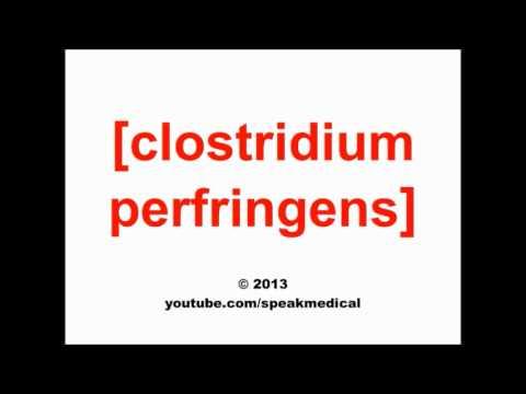 Pronounce Clostridium Perfringens Speakmedical Youtube