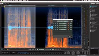 How to Use RX 5 Audio Editor Module Chains & Presets