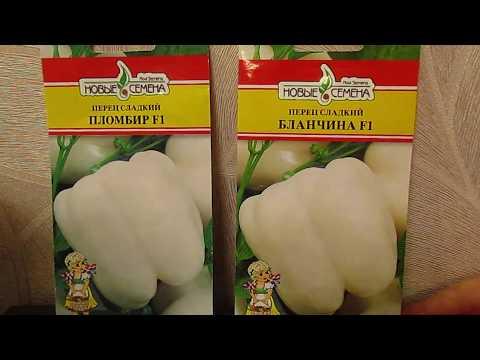 Перец ПЛОМБИР вновь в продаже.08.11.2019