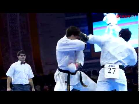 2013 Kyokushin-kan World Cup
