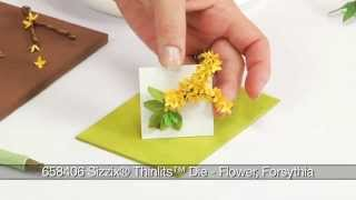How to Use Sizzix Thinlits Forsythia Flower Die