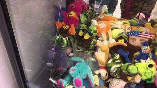 Winning A Teddy & A Giant Bird Wal-Mart Claw Machine