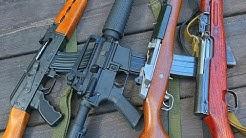 AK vs AR vs Mini14 vs SKS: Which should you buy?