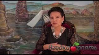 постер к видео Hoodia Gordonii (Худия Гордония) - средство для похудения