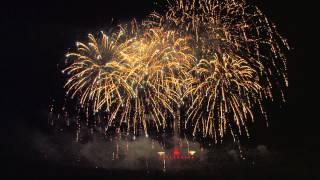 Pyronale 2014: Panda fireworks - China - feuerwerk