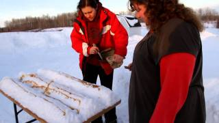 Making Maple Syrup Taffy Lollipops Or Snow Candy In Northern Ontario 1. Read How To Instructions.