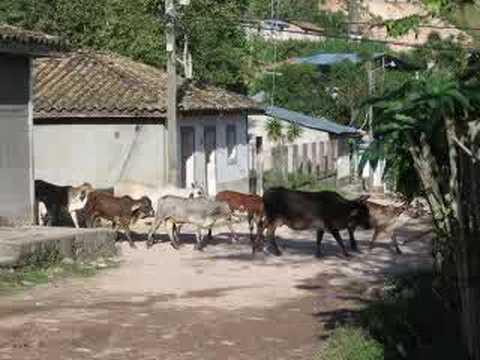 Fotos de Naranjito, SB, Honduras