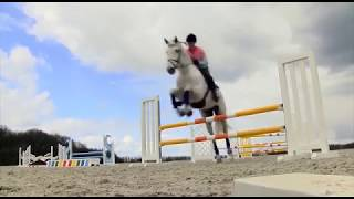 Luciana Diniz - G.R.O.W. RIDE - Yard and Stable Management