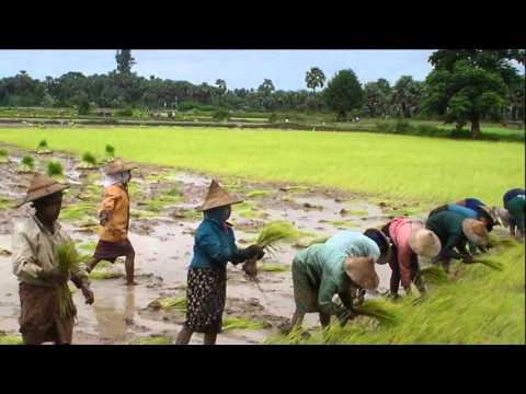 Myanmar – Republic of the Union of Myanmar
