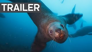 Blue Planet II Official Trailer 2 - BBC Earth