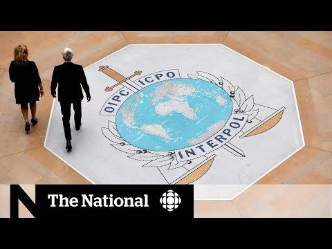 Kremlin Critics Aim To Stop A Possible Russian Interpol Head