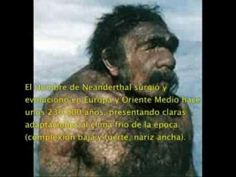 LA EVOLUCION DEL HOMBRE.mpeg