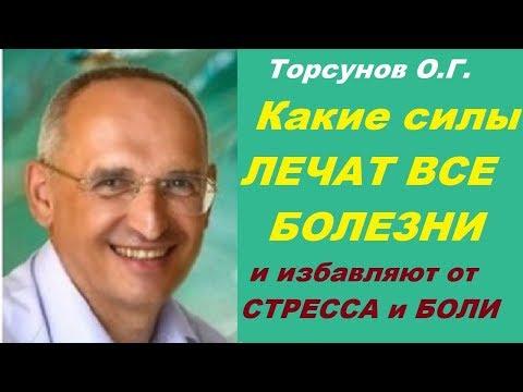 Торсунов О.Г. Какие силы ЛЕЧАТ ВСЕ БОЛЕЗНИ и избавляют от СТРЕССА и БОЛИ