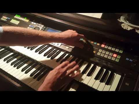Mr Bojangles  Technics GA1 Organ