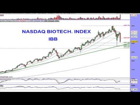 The largest Nasdaq Biotech index decline since 2008 - it could lead down the Nasdaq and S&P
