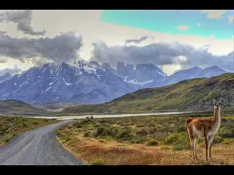 Patagonia chilena y zona austral youtube for Poda de arboles zona sur