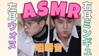 【ASMR】ミーニーの咀嚼音を聴こう[SEVENTEEN/セブチ/ウォヌ/ミンギュ]