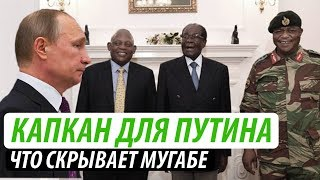 Капкан для Путина. Что скрывает Мугабе