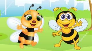 Dạy bé tập nói con vật tiếng Việt   em bé học đọc tên con ong con thỏ  Dạy trẻ thông minh sớm