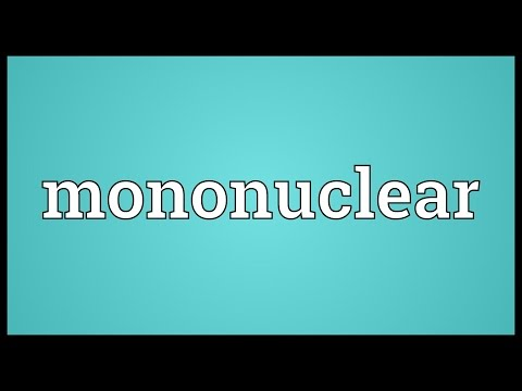 Header of mononuclear