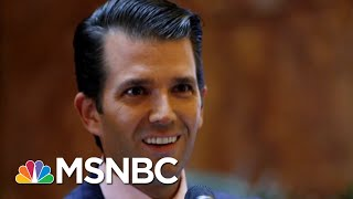 How Much Legal Jeopardy Could Donald Trump Jr. Be In? | The Last Word | MSNBC