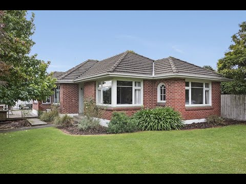 Papanui - Must Be Sold...  - Sue Roberts - Belfast