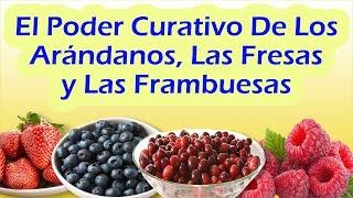 PROPIEDADES Y BENEFICIOS DEL ARANDANO - Beneficios y Propiedades De La Frambuesa y La Fresa