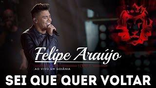 Felipe Araújo |  Sei Que Quer Voltar | DVD 1dois3