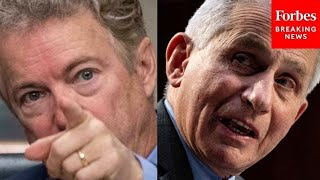 JUST IN: Fiery Clash Between Rand Paul And Dr. Fauci, Each Accuses The Other Of Lying thumbnail