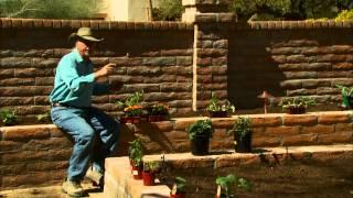 Multi Bed Raised Vegetable Garden - Step Outside