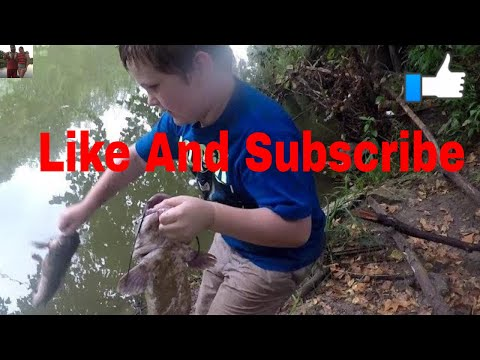 Catfishing With Danny Kings Punch Bait On A Circle Hook - Fish Pulled My Rod Into The Water