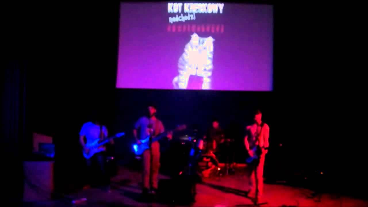 Kot Kreskowy Funny Application For The Jp Artist Festival Youtube