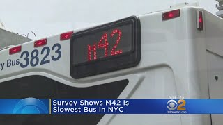 Survey Shows M42 Is Slowest Bus In NYC