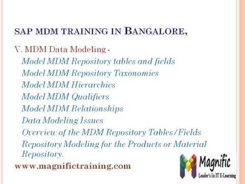 SAP MDM master data management Online Training CiteHR   CiteHR Human Resource