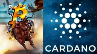Cardano Bullrun Bitcoin Bullish Cryptocurrencies Retribution As Market recovers