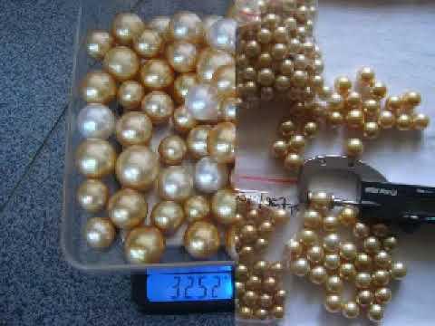 pearls wholesale whatsapp +6287865026222 Miss Joaquim Pearls Lombok Indonesia