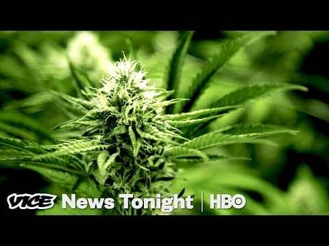 Oregon Weed Market & France Goes Green: VICE News Tonight Full Episode (HBO)