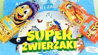 Super Zwierzaki Album | Szukanie zwierząt | Aplikacja Biedronka & Napoje Saguaro | Gry