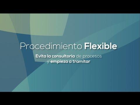 Proceso Flexible