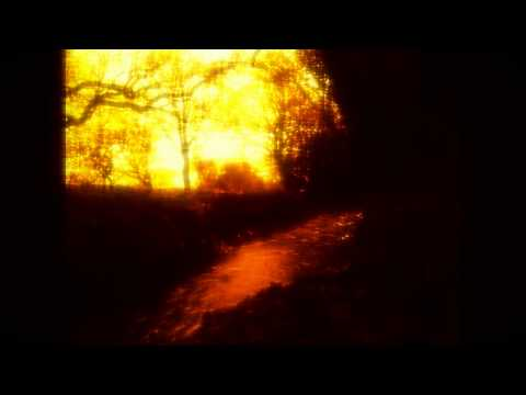 Living Water by Igneous Flame