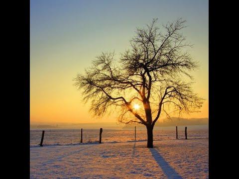 Oliver Schories - My Winter (Mixtape December 2014)