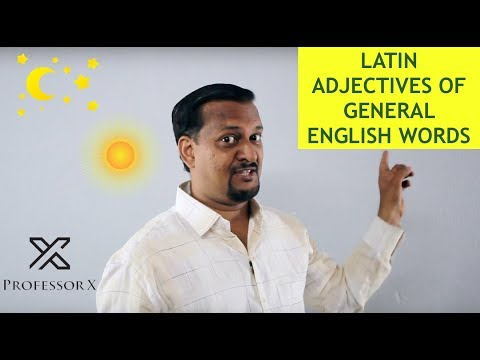 Learn Latin Adjectives of General Words (in Hindi)