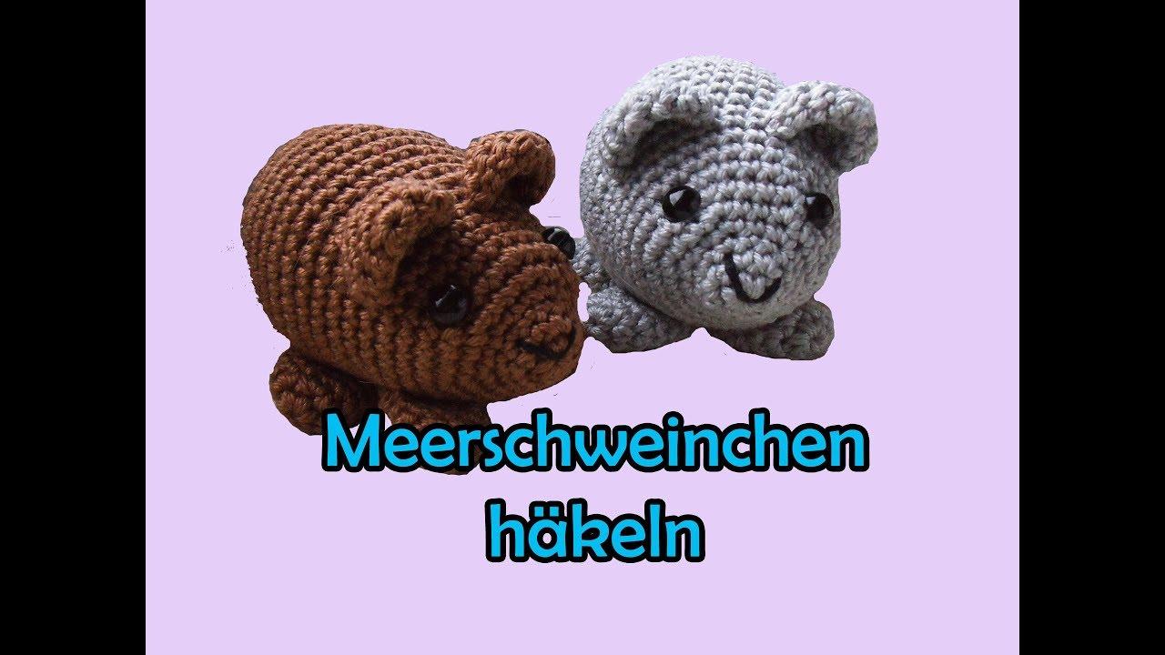 Meerschweinchen Häkeln Amigurumi Diy Häkelanleitung Youtube