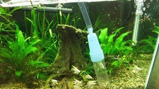 Как чистить дно аквариума? Чистка аквариума! Сифоним грунт в  аквариуме
