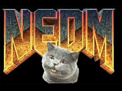NEDM Theme
