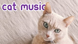 EXTREMELY Relaxing Cat Music - Soothing Instrumentals for You and Your Cat!
