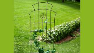 Trellises For Your Garden Flowers